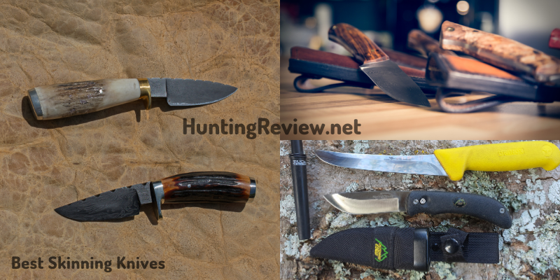 Skinning Knives For Deer